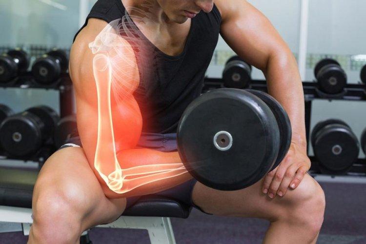 Анатомия и физиология на мускулния растеж