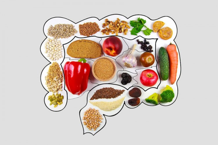 How does proper nutrition affect the body?