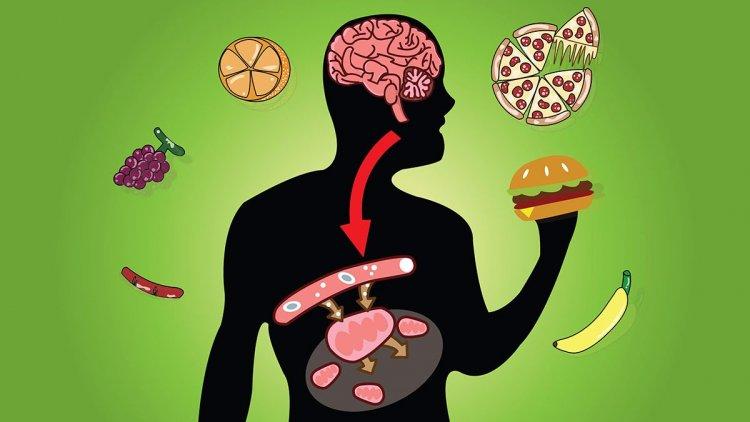 Анаболен прозорец - мит ли е, че трябва да ядете повече след тренировка?