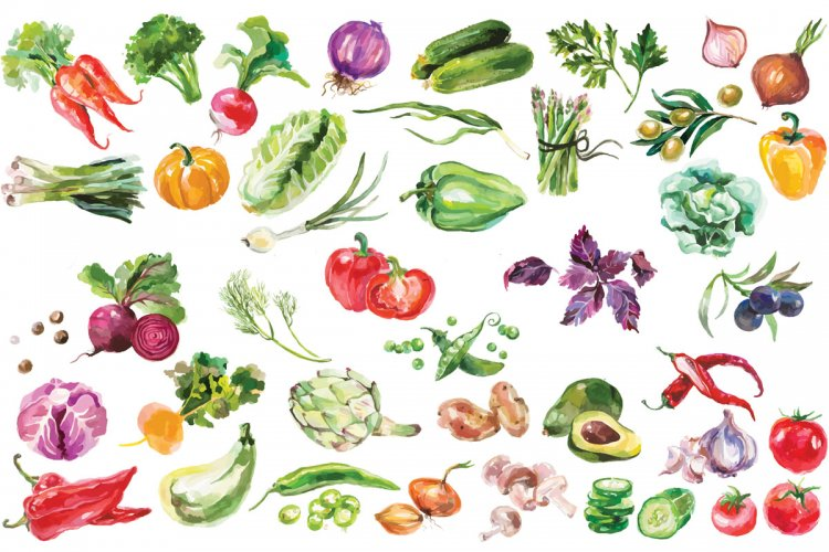 Norms of vegetables and fruits