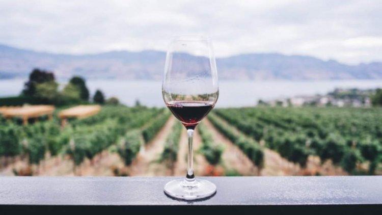 Защо виното е полезно, защо пием по една чаша вино всеки ден, наистина ли е виното здравословно?