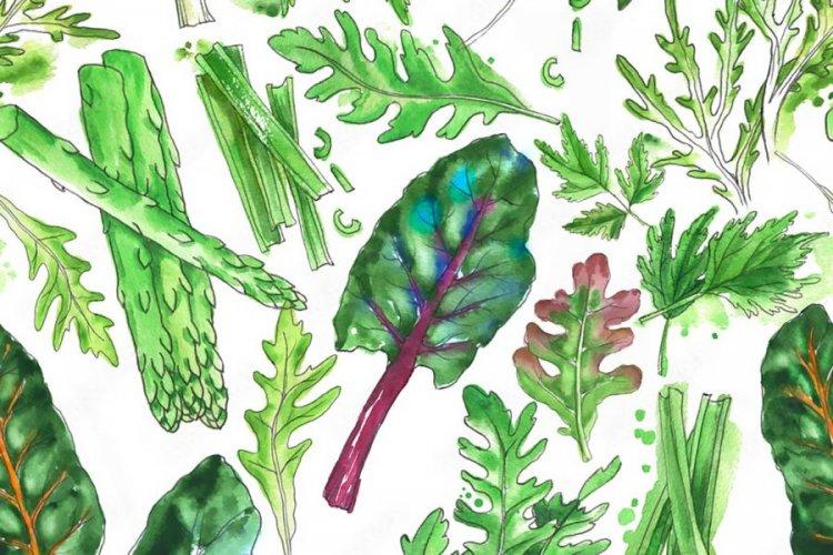 Където се съдържа - видове и видове влакна