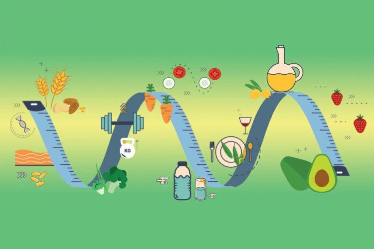 Как да се храним за мускулен растеж - калорично съдържание и пропорции на BJU